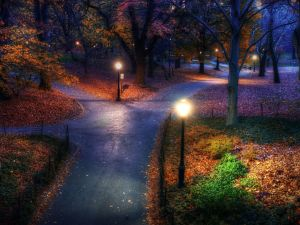 Central-Park-Autumn-Manhattan-Island-New-York-United-States