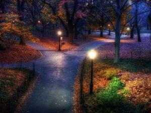 Central-Park-Autumn-Manhattan-Island-New-York-United-States